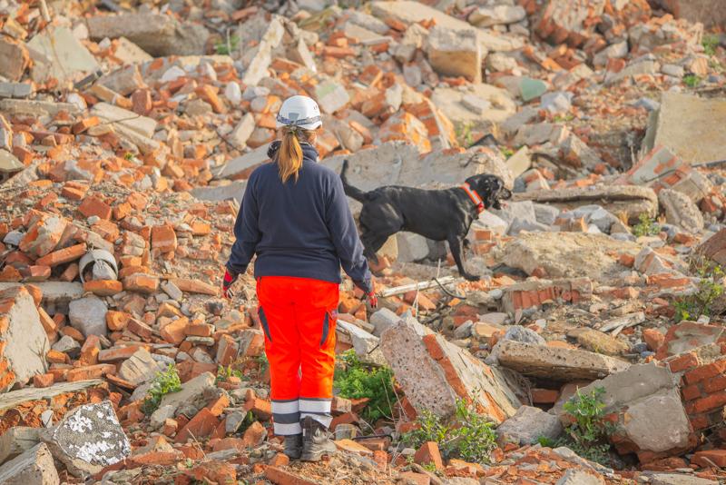 Rettungsund Trümmersuche Ausland